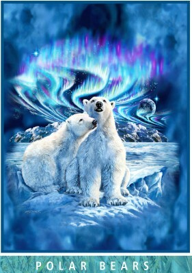 Polar Bear Northern Lights-Signature Mink Blanket MSRV $125.00
