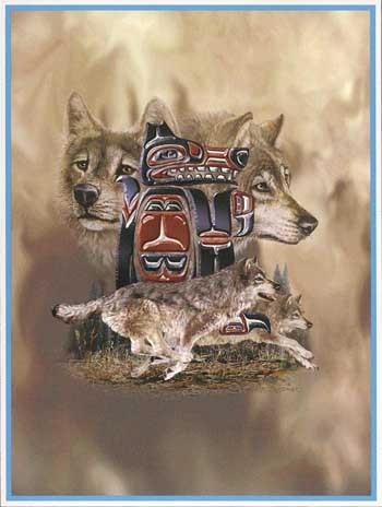 Alaska Wolves Twin Size Mink Plush Blankets MSRV $125.00