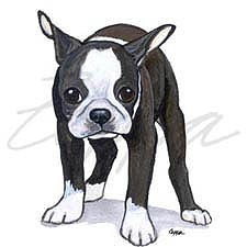 Boston Terrier Puppy Dog 'Wipe Your Paws' Towel - Zeppa Art
