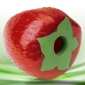 Planet Dog Strawberry Chew Toy