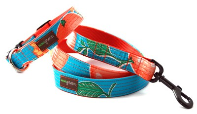 Media Naranja (My Better Half) - Orange, Blue, and Green Dog Collars and Leads by Mimi Green