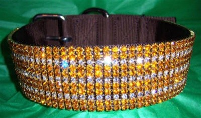 Golden Glow - Custom Jeweled Nylon Dog Collar - Clear & Topaz Crystals - Big Dogs