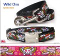 Wild One - Collar and Lead from Diva Dog - Available in Black or Pink
