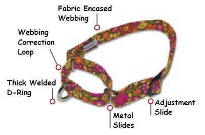 Sample of Martingale Dog Collar Construction