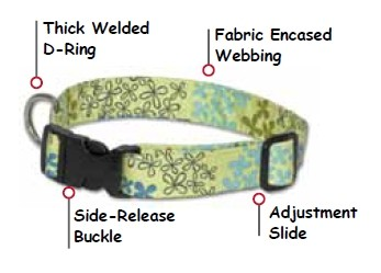 Sample of Dog Collar Construction
