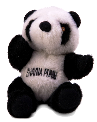"Shayna Punim - Panda - ""Chewish"" plush dog toy - Jewish"