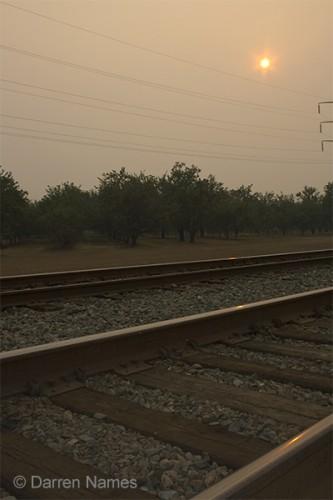 Train_Almond_Orchard_Photograph.jpg