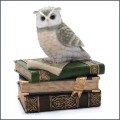 collared scopes owl on books trinket jewelry box