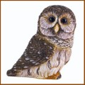 harmony ball barred owl pot belly