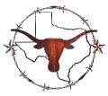 Texas Longhorn Steer with Texas State Shape Metal Wall Hanging