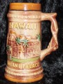 hawaii_mugs_3-09007.JPG