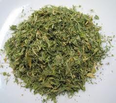 alfalfa leaf.jpeg