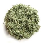 Horehound Herb Cut 1 Pound  Bulk