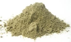 echinacearootpowder.jpeg