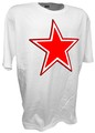 russian star roundel ww2 wh.jpeg