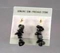 B43-39A_earrings.jpeg