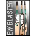 SS BLASTER English Willow Cricket Bat