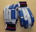 BDM LE Sachin Cricket Batting Gloves - LIGHT BLUE IPL EDITION
