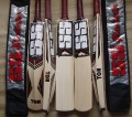 SS GLADIATOR Premium English Willow Cricket Bat