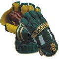 BDM AMAZER Cricket Wicket Keeping Gloves