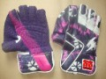 SS Players Edition 2012 PINK Cricket Wicket Keeping Gloves