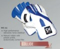 SM COLLIDE Wicket Keeping Gloves