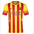 barcelona away1314.jpeg