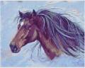 Horse Portraitchartimage.jpg