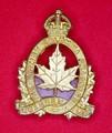 British Columbia Dragoons Cap Badge - FRONT.jpeg