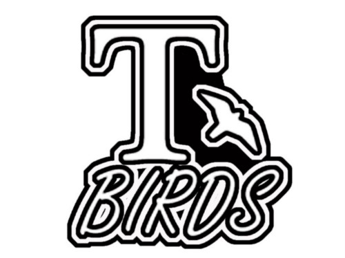 T Birds Iron on T Shirt Transfer