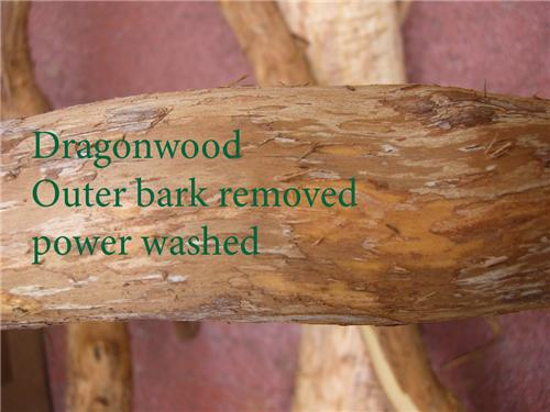 """Ouaw's Dragonwood Cage Perch Double Bolt -MED. $ PER 2"""" intervals"""