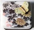 w042 Chrysanthemum菊花.jpeg