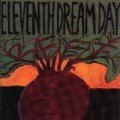 Eleventh Dream Day - Beet.jpg