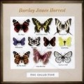 Barclay James Harvest - The Collection.jpg
