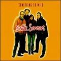 Bettie Serveert - Something So Wild.jpg