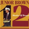 Junior Brown - 12 Shades Of.jpg
