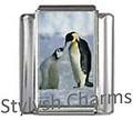 OC009 Penguins.jpg
