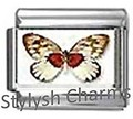 BI032 Italian Charm BUTTERFLY INSECT Photo Charm