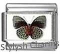 BI036 Italian Charm BUTTERFLY INSECT Photo Charm
