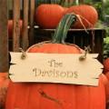 pumpkin-sign-400.jpeg