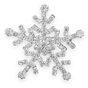 how to make a real crystal snowflake