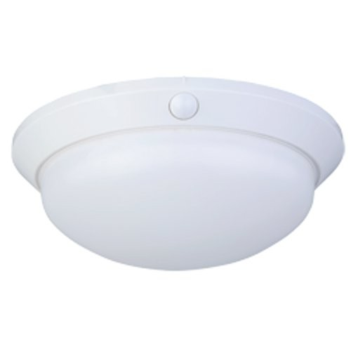 Arlec Oyster Security Light With Globe Bourne Electronics