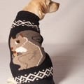 squirrel dog sweater.jpeg