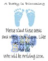 baby shower seed packet blue footprint.jpeg