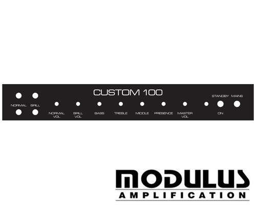 hiwatt faceplates custom 100