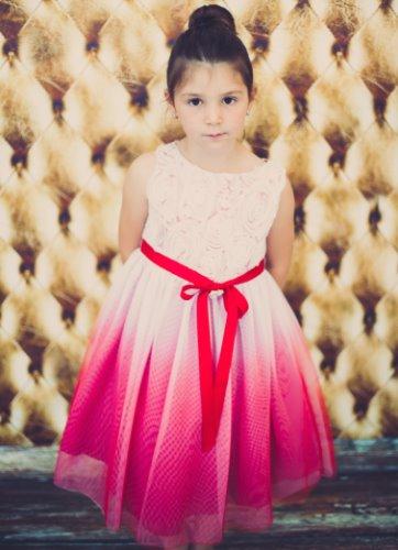 Red Ombré Tulle Flower Girl Dress w. Rosette Bodice  KD322 (1)