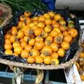 PlantsNaranjilla#2.jpg