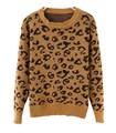 kn18P leopard print pullover.jpeg