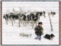 Curious-Onlookers-Cows-Boy-Snow-Throw-Blanket.jpeg