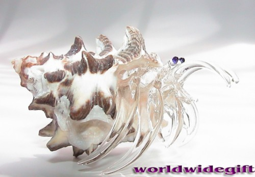 Glass Hermit Crab Shells Hermit Crab w Real Sea Shell